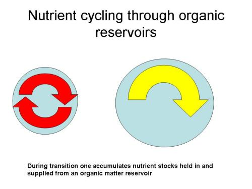 This cartoon depicts idealized changes that occur where fast mineral nutrient cycling (depicted by red arrows) in depleted organic reservoirs (depicted by blue sphere) is altered by improved management to result in slower cycling rates (yellow arrow) within an enlarged reservoir.