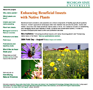 Native plants for insects homepage thumbnail